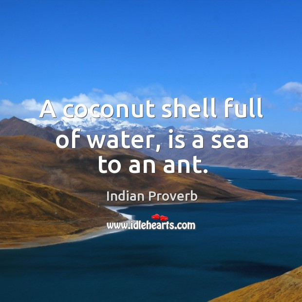 Image about A coconut shell full of water, is a sea to an ant.