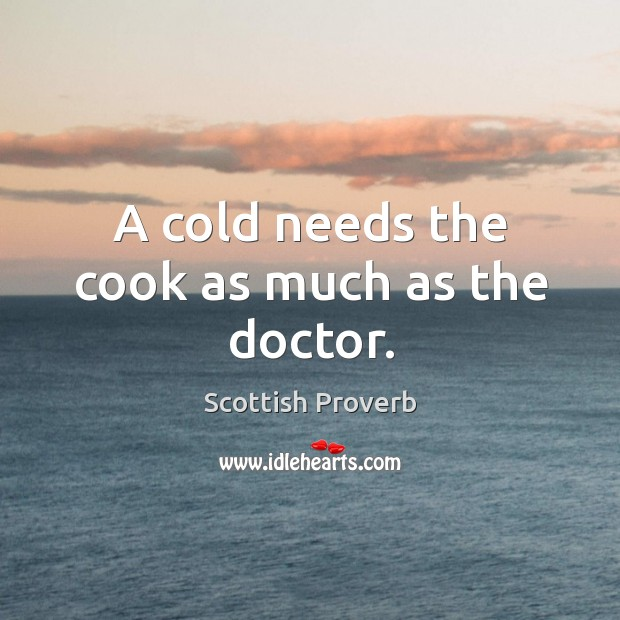 Image, A cold needs the cook as much as the doctor.