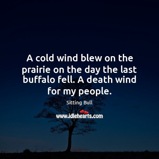 A cold wind blew on the prairie on the day the last Image