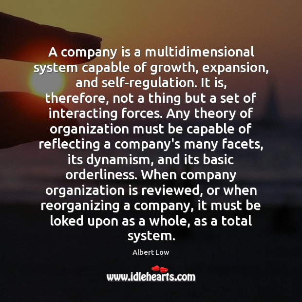Image, A company is a multidimensional system capable of growth, expansion, and self-regulation.