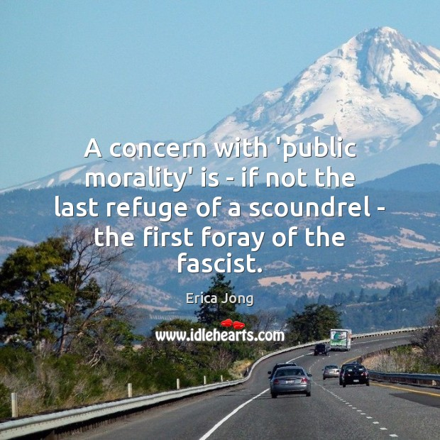A concern with 'public morality' is – if not the last refuge Erica Jong Picture Quote