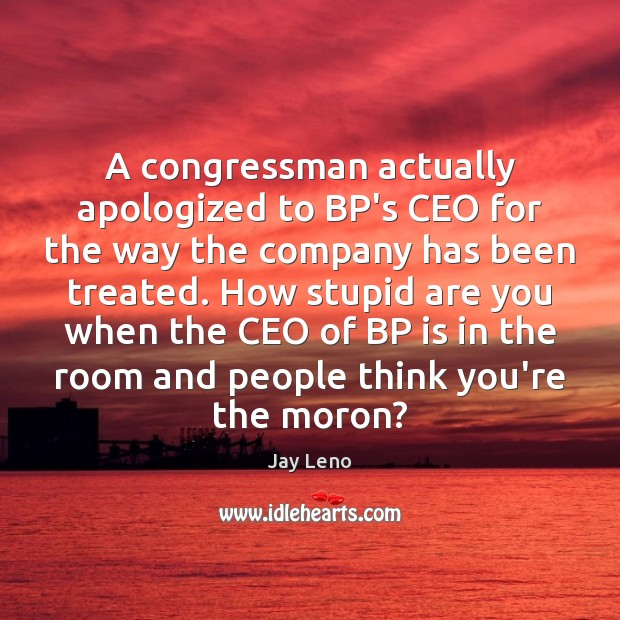 Image, A congressman actually apologized to BP's CEO for the way the company