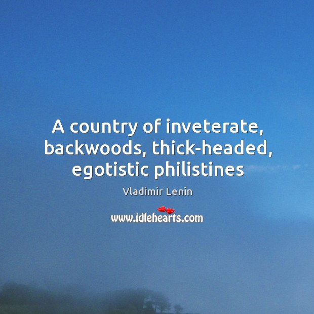 Image, A country of inveterate, backwoods, thick-headed, egotistic philistines