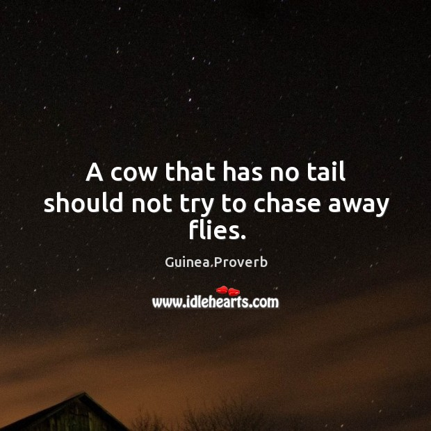 A cow that has no tail should not try to chase away flies. Guinea Proverbs Image