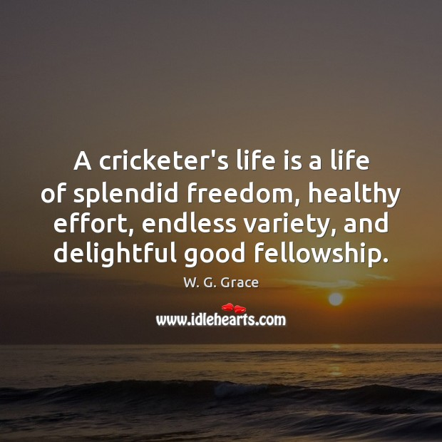 A cricketer's life is a life of splendid freedom, healthy effort, endless Effort Quotes Image