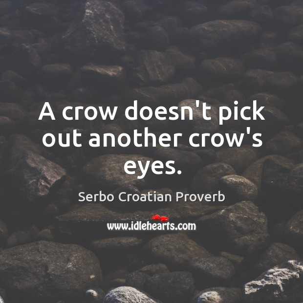 A crow doesn't pick out another crow's eyes. Serbo Croatian Proverbs Image