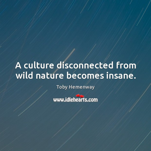 A culture disconnected from wild nature becomes insane. Toby Hemenway Picture Quote