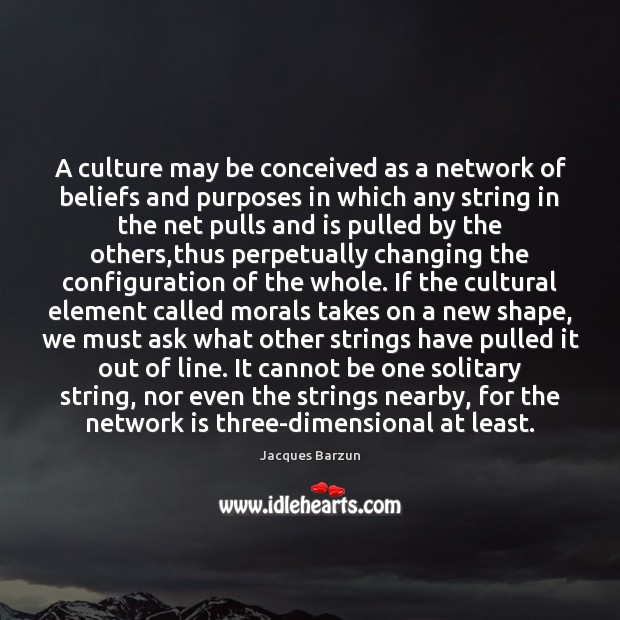 Image, A culture may be conceived as a network of beliefs and purposes