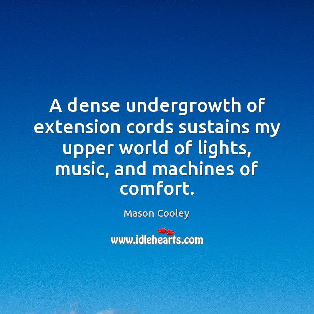A dense undergrowth of extension cords sustains my upper world of lights, Image
