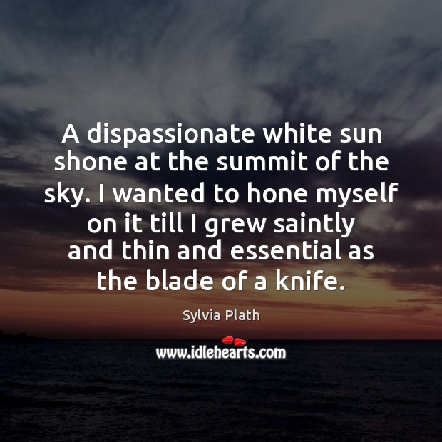 Image, A dispassionate white sun shone at the summit of the sky. I