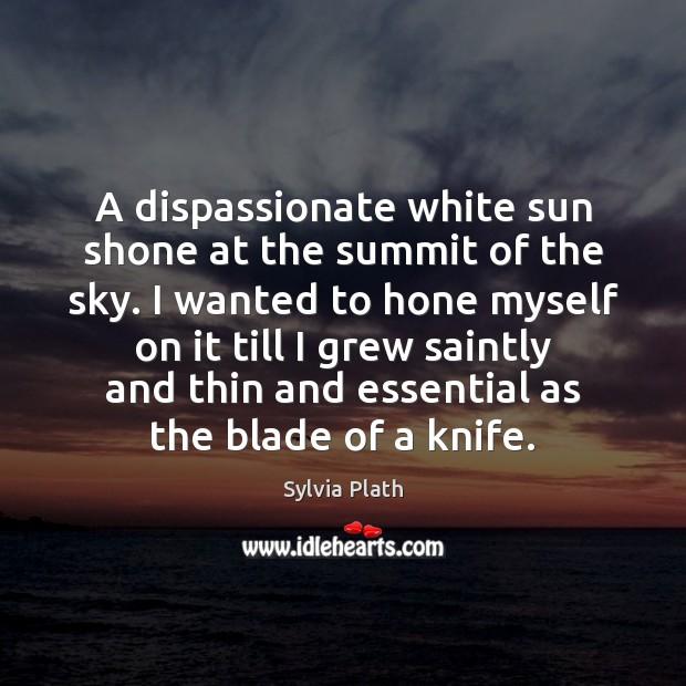 A dispassionate white sun shone at the summit of the sky. I Image