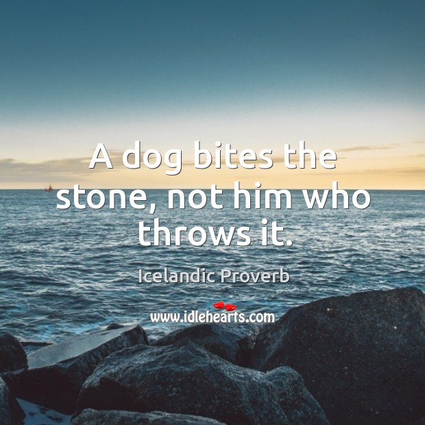 A dog bites the stone, not him who throws it. Icelandic Proverbs Image