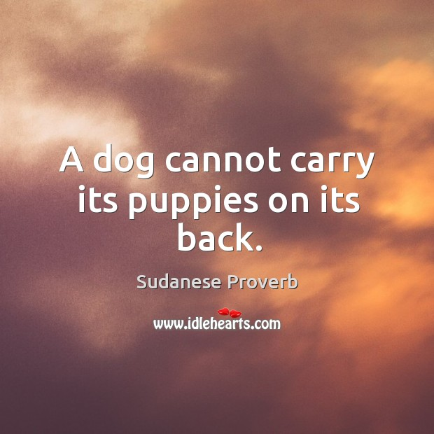 A dog cannot carry its puppies on its back. Sudanese Proverbs Image