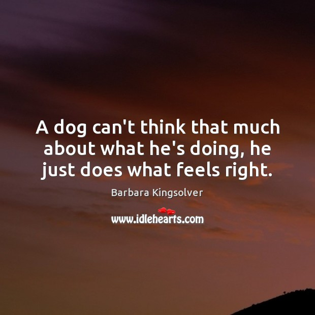 A dog can't think that much about what he's doing, he just does what feels right. Image