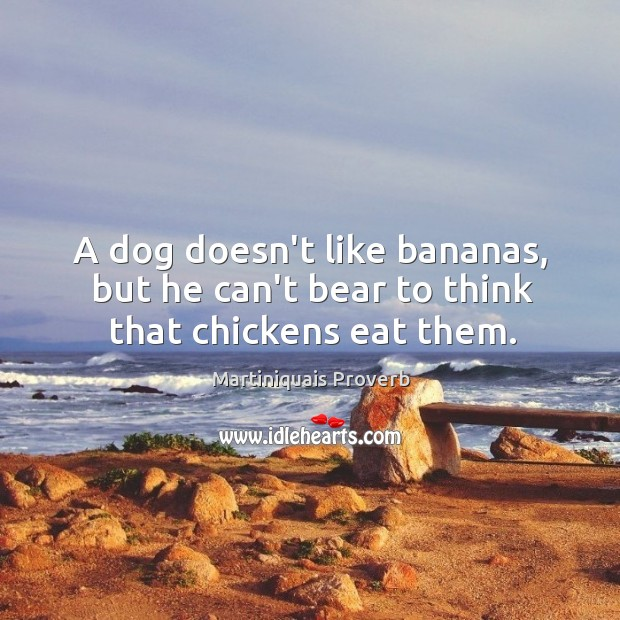 A dog doesn't like bananas, but he can't bear to think that chickens eat them. Martiniquais Proverbs Image