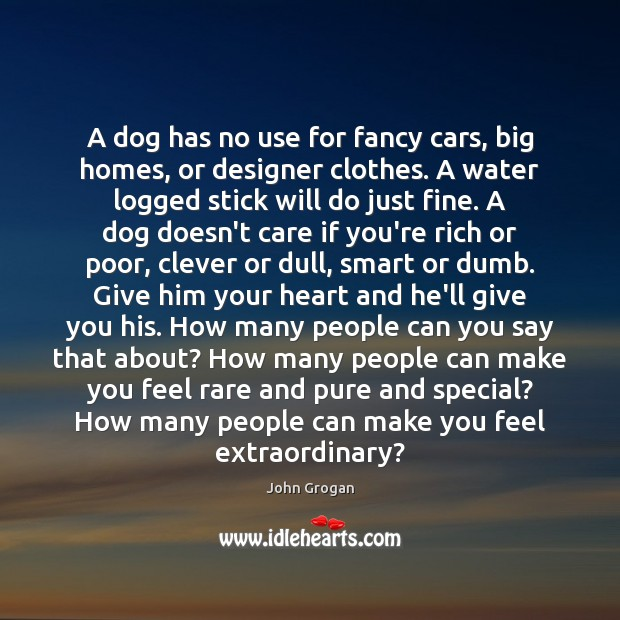 A dog has no use for fancy cars, big homes, or designer Image