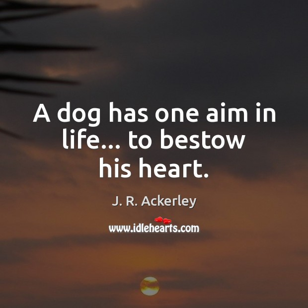 A dog has one aim in life… to bestow his heart. J. R. Ackerley Picture Quote