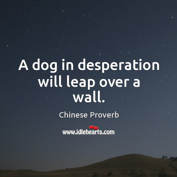 Image, A dog in desperation will leap over a wall.