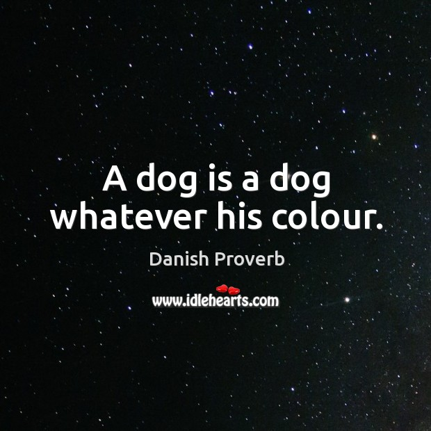 Image, A dog is a dog whatever his colour.