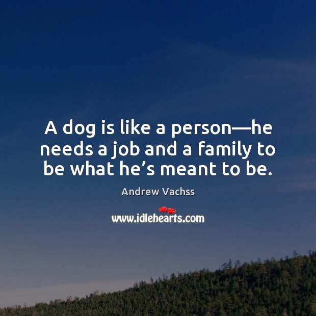 Image, A dog is like a person—he needs a job and a family to be what he's meant to be.