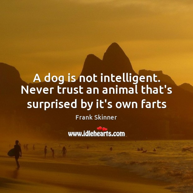 A dog is not intelligent. Never trust an animal that's surprised by it's own farts Never Trust Quotes Image