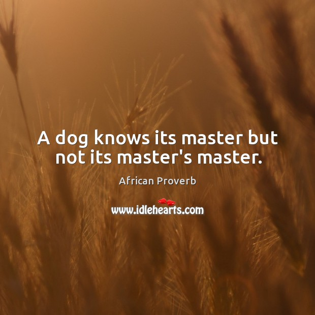 Image, A dog knows its master but not its master's master.
