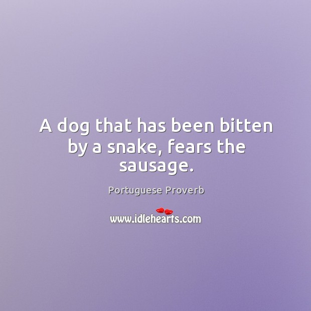 A dog that has been bitten by a snake, fears the sausage. Image