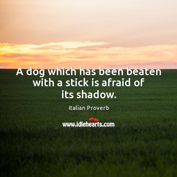 A dog which has been beaten with a stick is afraid of its shadow. Image