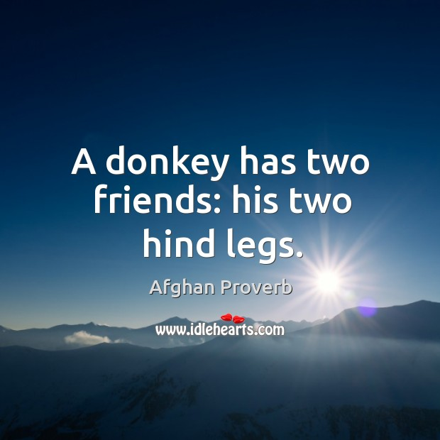Image, A donkey has two friends: his two hind legs.