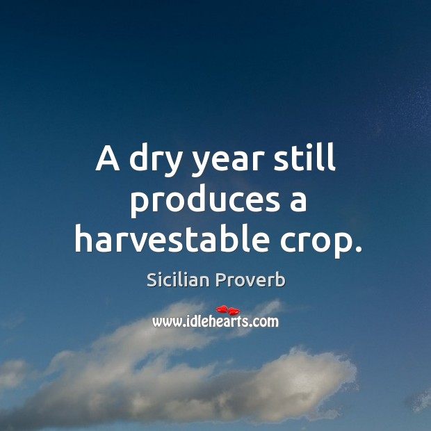 Image, A dry year still produces a harvestable crop.