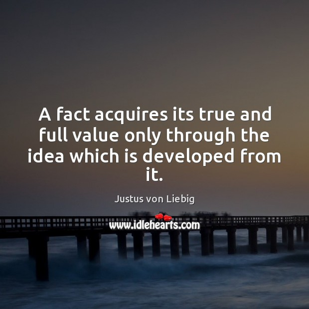 Image, A fact acquires its true and full value only through the idea which is developed from it.