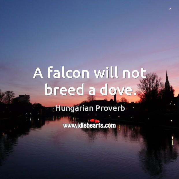 Image, A falcon will not breed a dove.