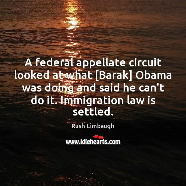 Image, A federal appellate circuit looked at what [Barak] Obama was doing and