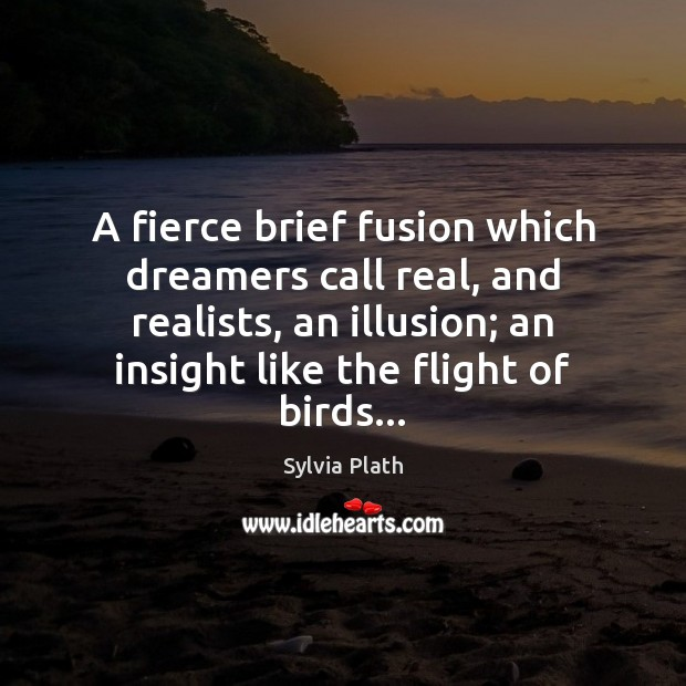 Image, A fierce brief fusion which dreamers call real, and realists, an illusion;