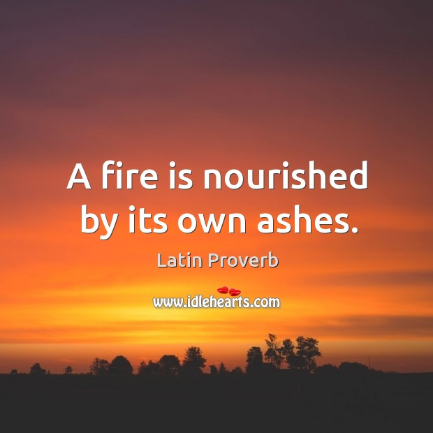 Image, A fire is nourished by its own ashes.