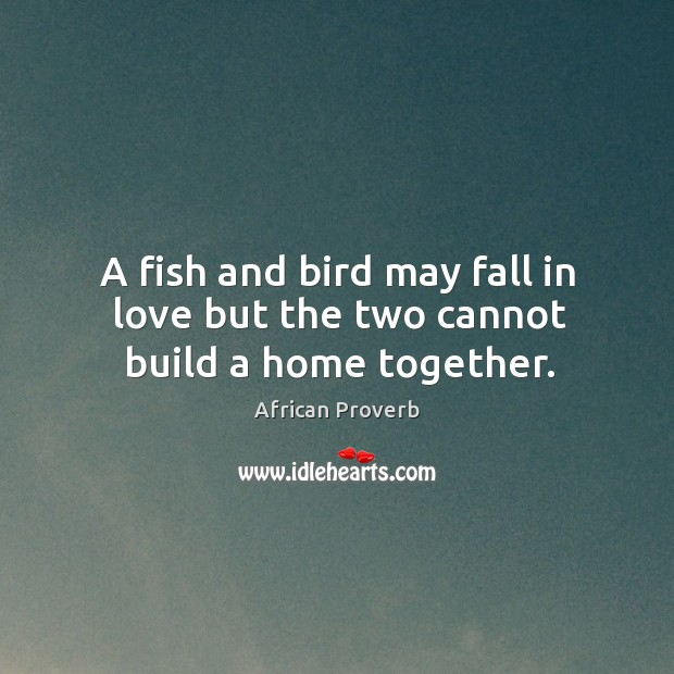 Image, A fish and bird may fall in love but the two cannot build a home together.
