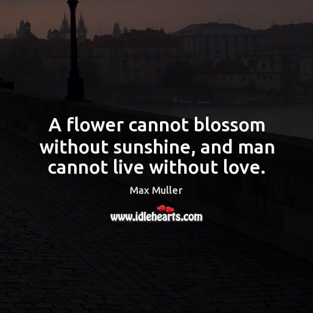 Image, A flower cannot blossom without sunshine, and man cannot live without love.
