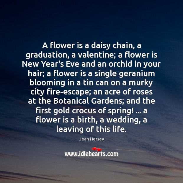 a flower is a daisy chain a graduation a valentine a flower is new years eve and an orchid in your hair a flower is a single geranium blooming in a tin