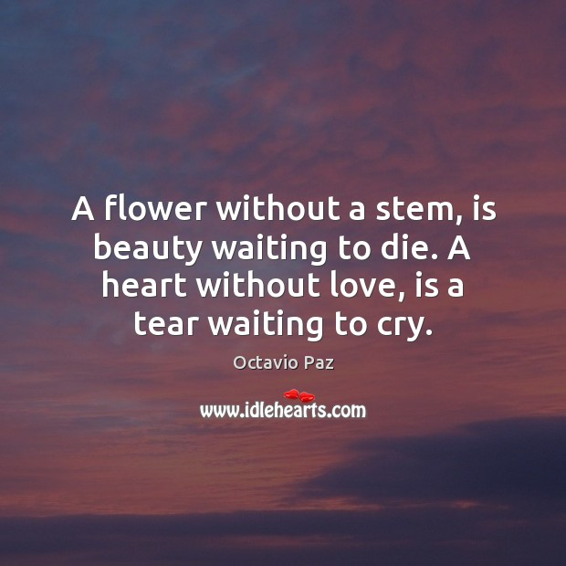 A flower without a stem, is beauty waiting to die. A heart Octavio Paz Picture Quote