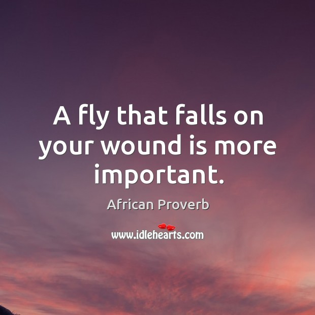 Image, A fly that falls on your wound is more important.