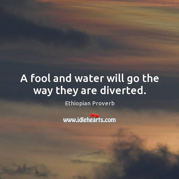A fool and water will go the way they are diverted. Image