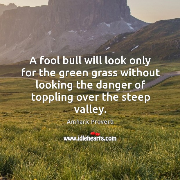 Image, A fool bull will look only for the green grass without looking the danger