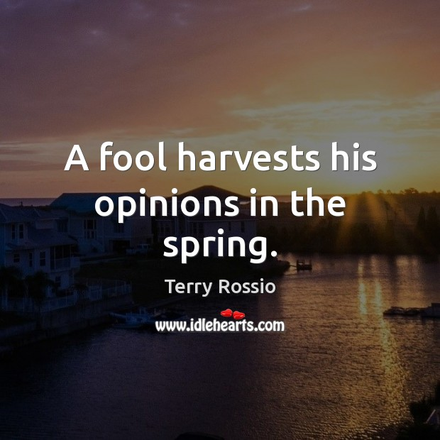 A fool harvests his opinions in the spring. Image