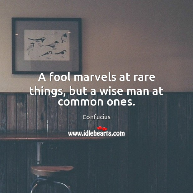 Image, A fool marvels at rare things, but a wise man at common ones.