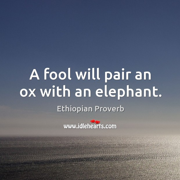 Image, A fool will pair an ox with an elephant.