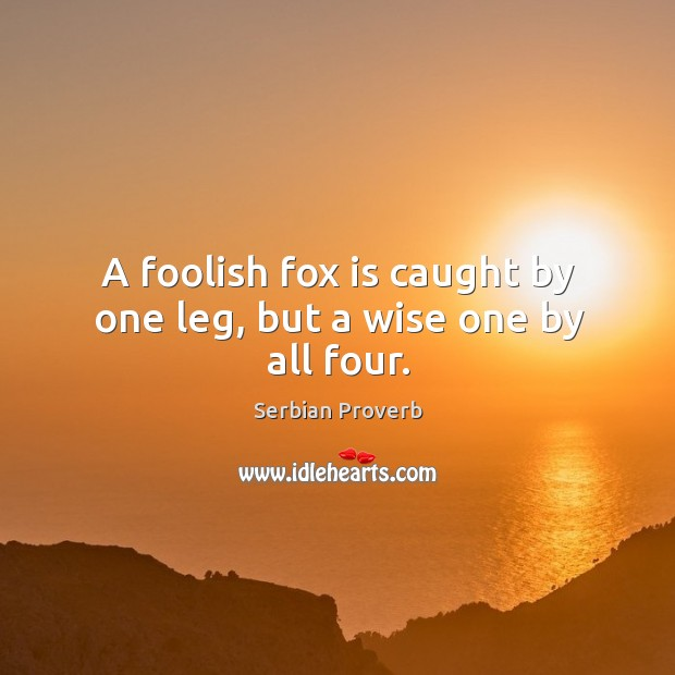 A foolish fox is caught by one leg, but a wise one by all four. Serbian Proverbs Image