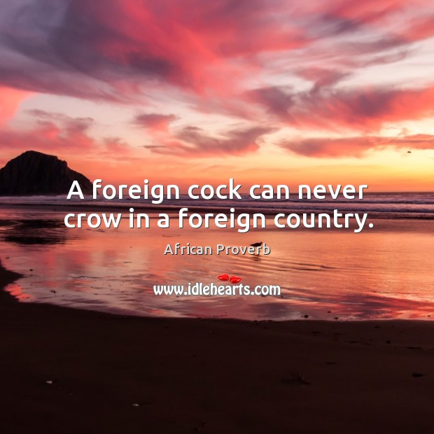 Image, A foreign cock can never crow in a foreign country.