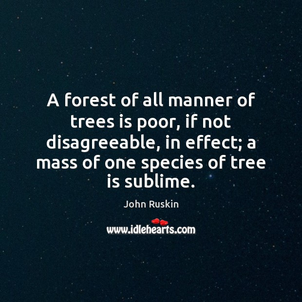 Image, A forest of all manner of trees is poor, if not disagreeable,
