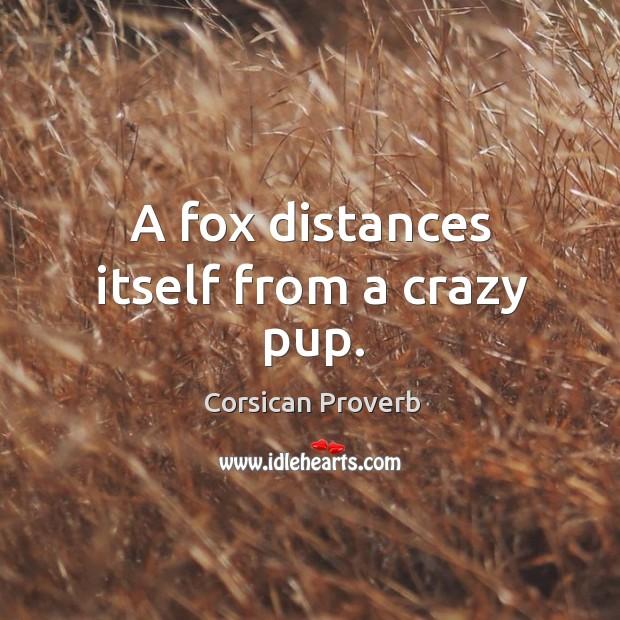 Corsican Proverbs