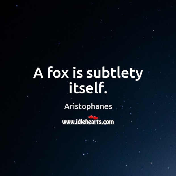 Image, A fox is subtlety itself.